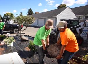 landscaping gardeners
